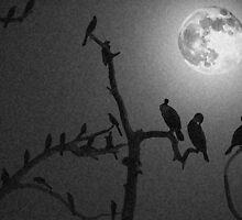 Moon Night by Savannah Gibbs