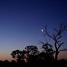 Sunset before Crescent Moon by Scott Pounsett