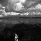 Curleys Bay, Culburra Beach by Noel Elliot