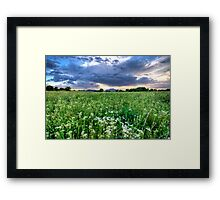 Tall Green and Clouds Framed Print