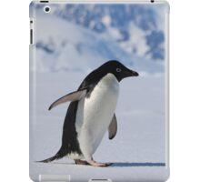 Adelie Penguin in Antarctica,   23 iPad Case/Skin