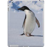 Adelie Penguins in Antarctica,   24 iPad Case/Skin