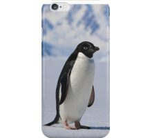 Adelie Penguins in Antarctica,   25 iPhone Case/Skin