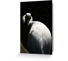 White Crane Seeks Enlightenment Greeting Card