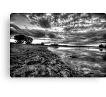 Up the Shoreline-B+W Canvas Print