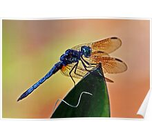 Dragonfly on a Leaf  *After* Poster
