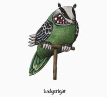 Badgerigar on Stand Illustration Kids Clothes