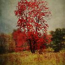 The Red Tree by vigor