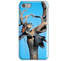 Red-Tail Black Cockatoos in action iPhone Case/Skin