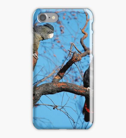 Family of Cockatoos iPhone Case/Skin