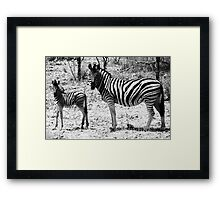 Mimic Framed Print