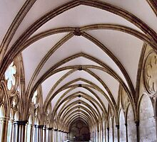 Cloister at the Salisbury Cathedral by Clive