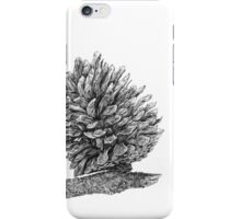 Pine cone graphite iPhone Case/Skin