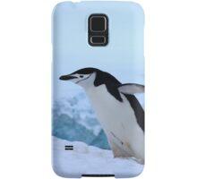 Chinstrap penguin in Antarctica, 4 Samsung Galaxy Case/Skin