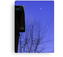 old house, moon, sparrow and tree Canvas Print