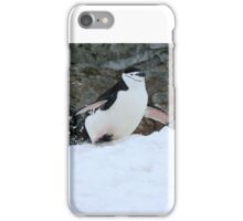 Chinstrap penguins in Antarctica,    5 iPhone Case/Skin