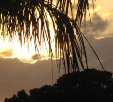 A Peaceful Evening Sky in Florida Sticker