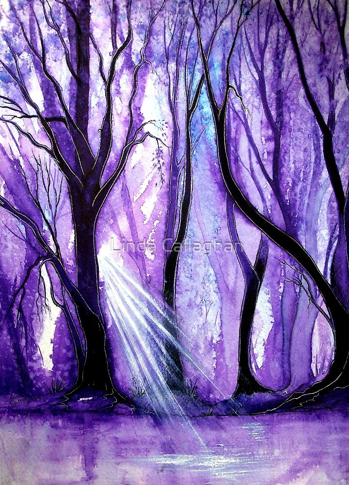 Ray of Light by Linda Callaghan