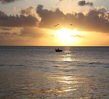 Sunset in Tobago by redfella82