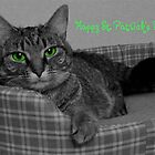 Happy St. Patrick's Day From Gracie by Marie Sharp
