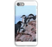 Chinstrap penguins in Antarctica,    14 iPhone Case/Skin