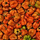 Red Scotch Bonnet Peppers by Bill Wetmore