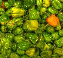 Green Scotch Bonnet Peppers by njordphoto