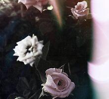 { summer } by lunar-rose