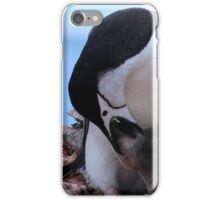 Chinstrap penguins in Antarctica,  Feeding baby    17 iPhone Case/Skin