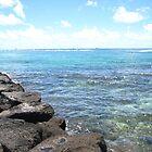 hawaii by radiooff