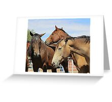 The Mares Greeting Card