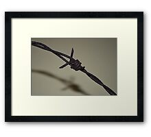 Rusted barded wire Framed Print