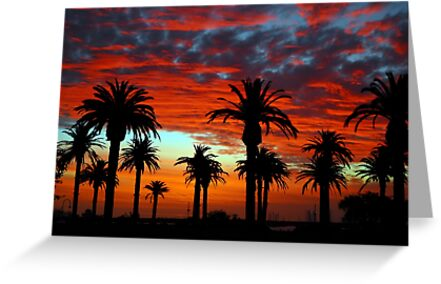 Sunset at St Kilda Beach  by Donna O'Connor