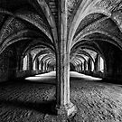 The Cellarium by Ray Clarke