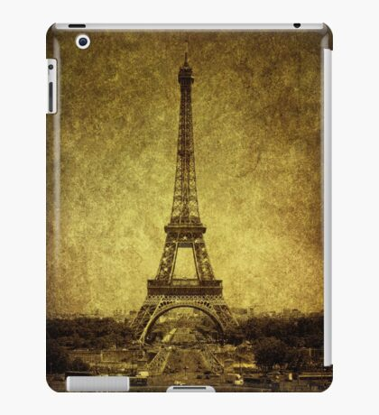 Dignified Stature iPad Case/Skin