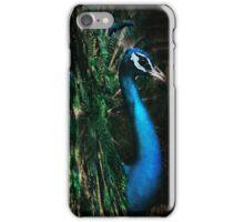 Splendour iPhone Case/Skin