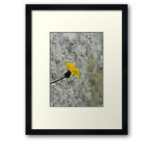 ©NS Yellow Distance IA. Framed Print