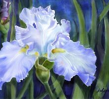 Blue Ruffles -digital watercolour of a pale blue ruffled Iris by Joan A Hamilton