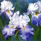 Three Blue Irises by Joan A Hamilton