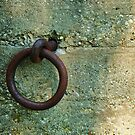 Rusty Ring by knobby