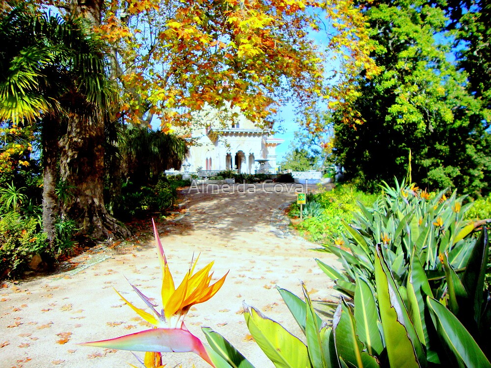 welcome to paradise 150..sintra portugal.. by Almeida Coval
