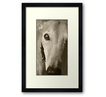Are you my human? Framed Print