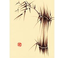 'Genmai Cha' - brush pen bamboo painting Photographic Print