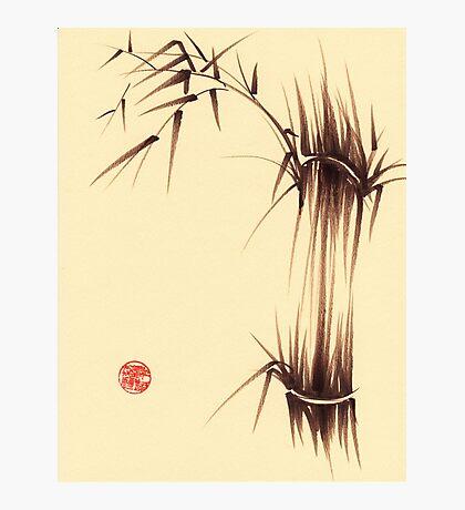 'Genmai Cha' - brush pen bamboo painting Photographic Print