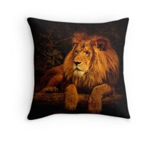 Pragmatism Throw Pillow
