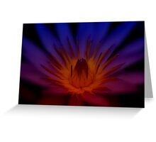 Flame of the Waterlily Greeting Card