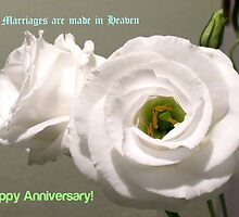 Peony Roses Wedding Anniversary Card by BlueMoonRose