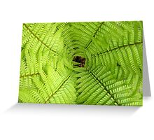 The Crown of a fern Greeting Card