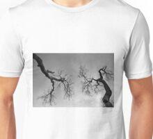 Onward & Upward - Redlands Qld Australia Unisex T-Shirt