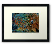 Jewel landscape  Framed Print
